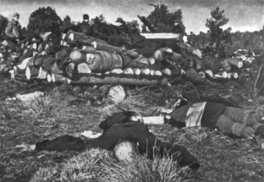 Фото 1. Лагерь Klooga. Одна из первых фотографий с места ликвидации узников лагеря.
